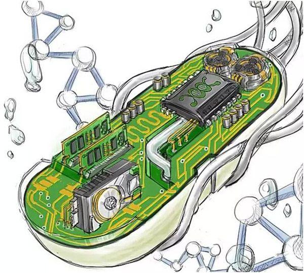 合成生物科技