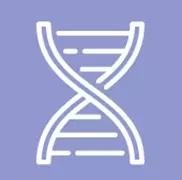 DNA合成与测序