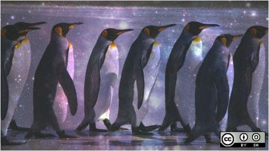 七款工具利用bcc/BPF实现Linux性能分析