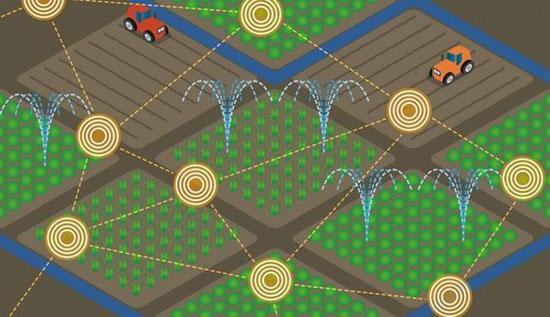 物联网  农业