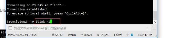 centos服务器分区挂载第二块磁盘详细图解教程