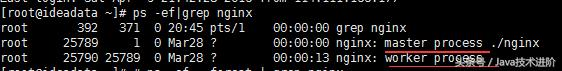 浅谈Nginx负载均衡与F5的区别