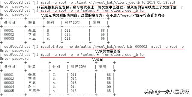 MySQL备份案例